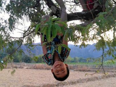 10 février : enfant jouant dans un arbre sour la route de Kong Lor Cave
