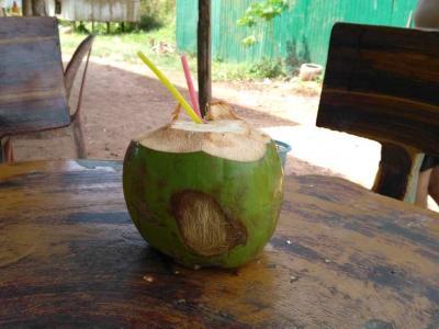 Une petite désaltération à la noix de coco