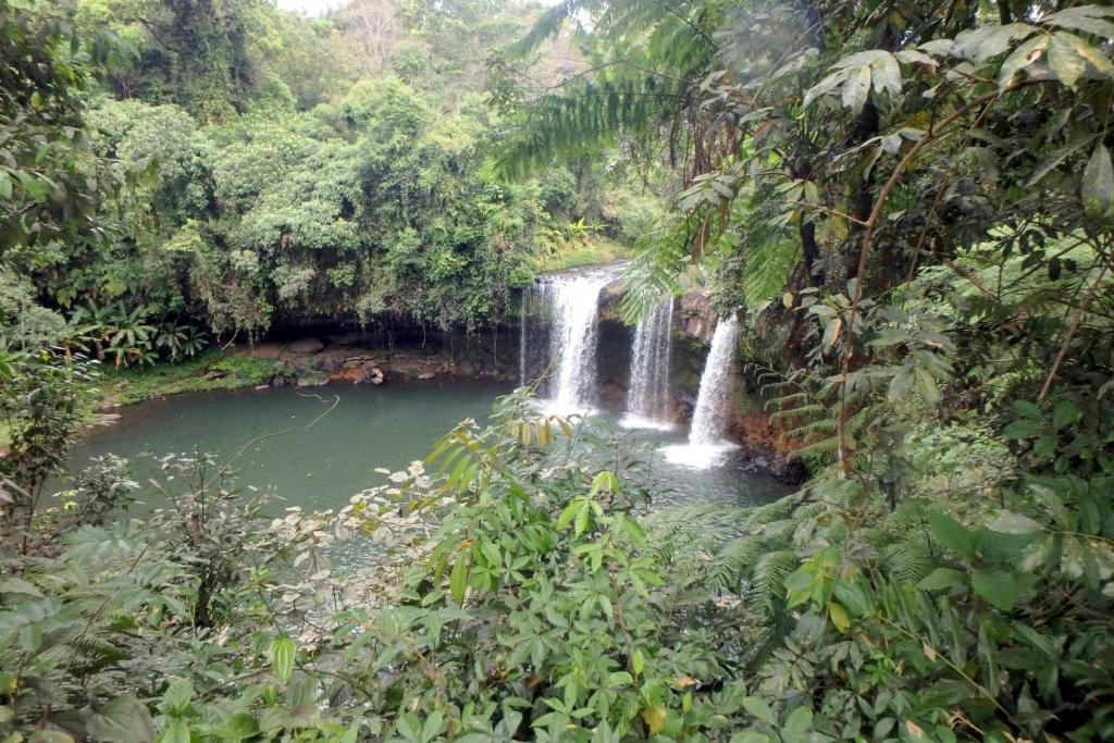 Cascade de Champee