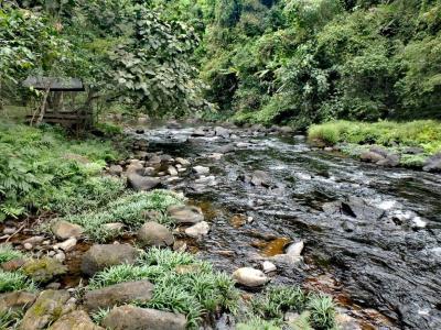 La rivière avant la cascade