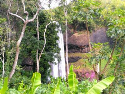 Cascade de Tad Tayicsua