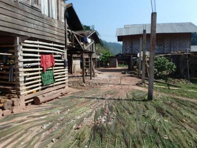 Village Akha au Laos : maisons