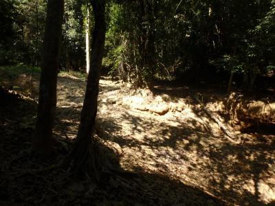 Les cascades de Tad Sae