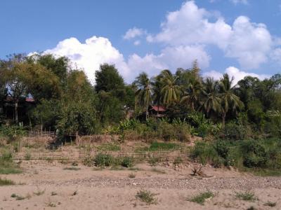 Luang Prabang : plage