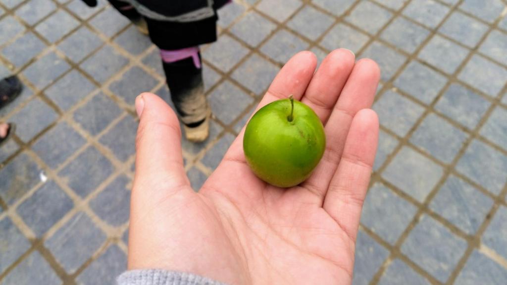 Petite pomme ronde du marché de Sapa
