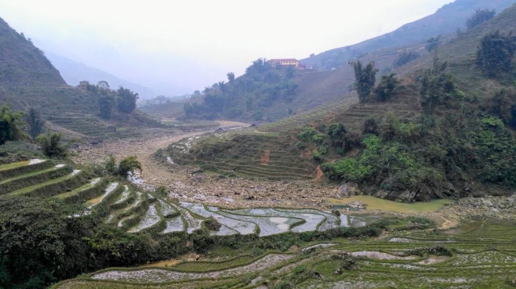 Rizière dans la région de Sapa (Vietnam)